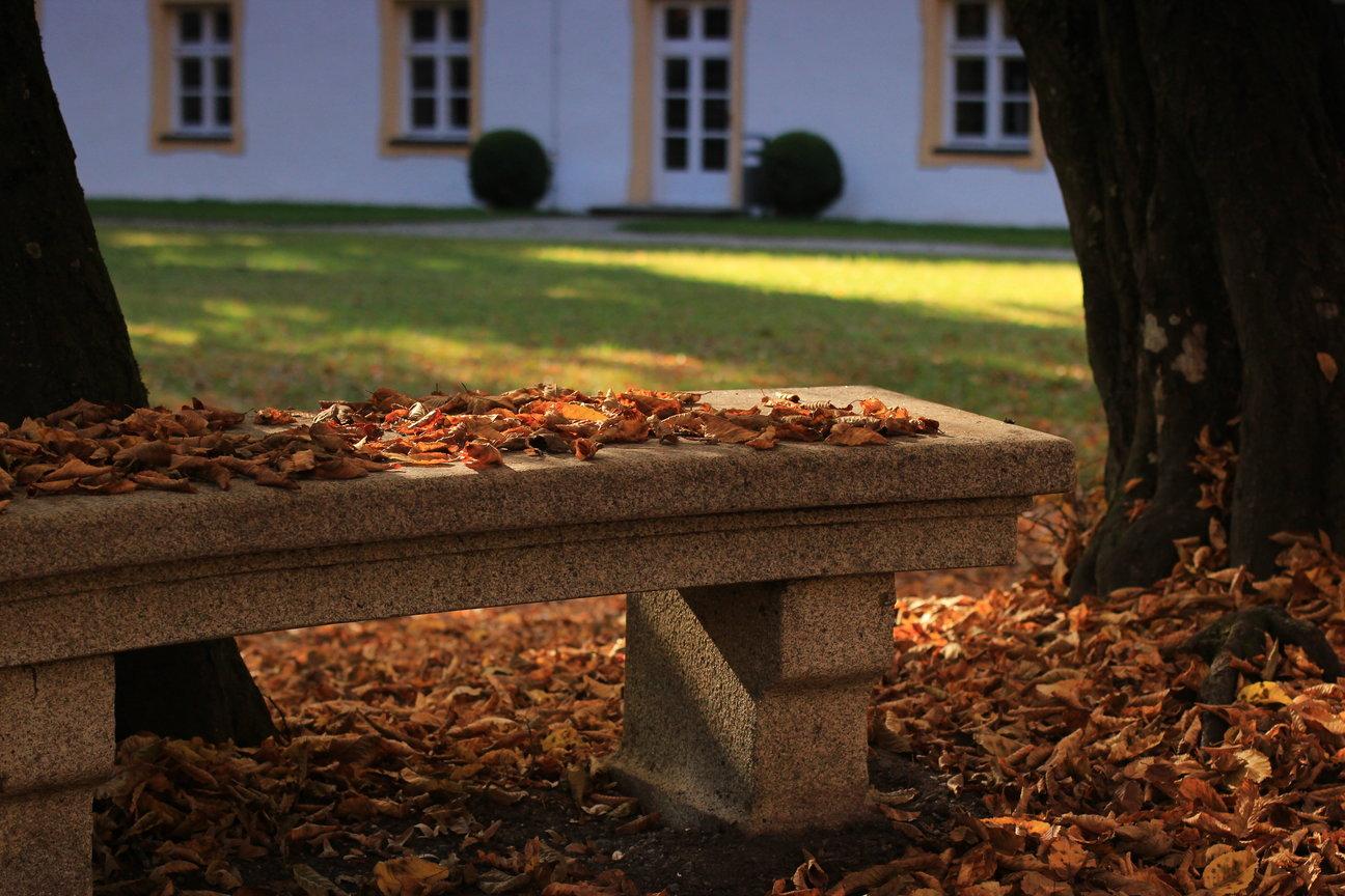 Herbst-Rundgang Freising, Neustift (2016)